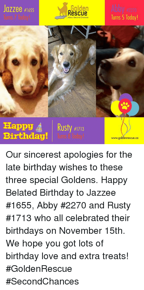 golden rescue abby turns 5 today jazzee 1655 about second 29077425 ✅ 25 best memes about happy late birthday happy late birthday