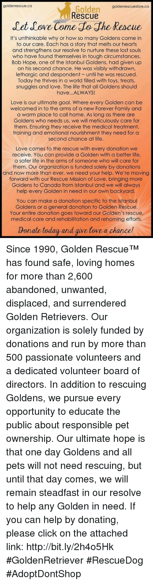 Click, Family, and Life: goldenrescue.ca  goldenrescuestore.ca  Golden  Rescue  let ove Come Lo he Rescue  It's unthinkable why or how so many Goldens come in  to our care. Each has a story that melts our hearts  and strengthens our resolve to nurture these lost souls  who have found themselves in tough circumstances  Bob Hope, one of the Istanbul Goldens, had given up  on his second chance. He was visibly withdrawn,  lethargic and despondent until he was rescued.  Today he thrives in a world filled with toys, treats  snuggles and love. The life that all Goldens should  have...ALWAYS  Love is our ultimate goal. Where every Golden can be  welcomed in to the arms of a new Forever Family and  a warm place to call home. As long as there are  Goldens who needs us, we will meticulously care for  them. Ensuring they receive the medical treatment,  training and emotional nourishment they need for a  second chance at life  Love comes to the rescue with every donation we  receive. You can provide a Golden with a better life  a safer life in the arms of someone who will care for  them. Our organization is funded solely by donations  and now more than ever, we need your help. We're moving  forward with our Rescue Mission of Love, bringing more  Goldens to Canada from Istanbul and we will always  help every Golden in need in our own backyard  You can make a donation specific to the Istanbul  Goldens or a general donation to Golden Rescue.  Your entire donation goes toward our Golden's rescue,  medical care and rehabilitation and rehoming efforts.  Donate today and qive love a chance Since 1990, Golden Rescue™ has found safe, loving homes for more than 2,600 abandoned, unwanted, displaced, and surrendered Golden Retrievers. Our organization is solely funded by donations and run by more than 500 passionate volunteers and a dedicated volunteer board of directors. In addition to rescuing Goldens, we pursue every opportunity to educate the public about responsible pet ownership.  Our