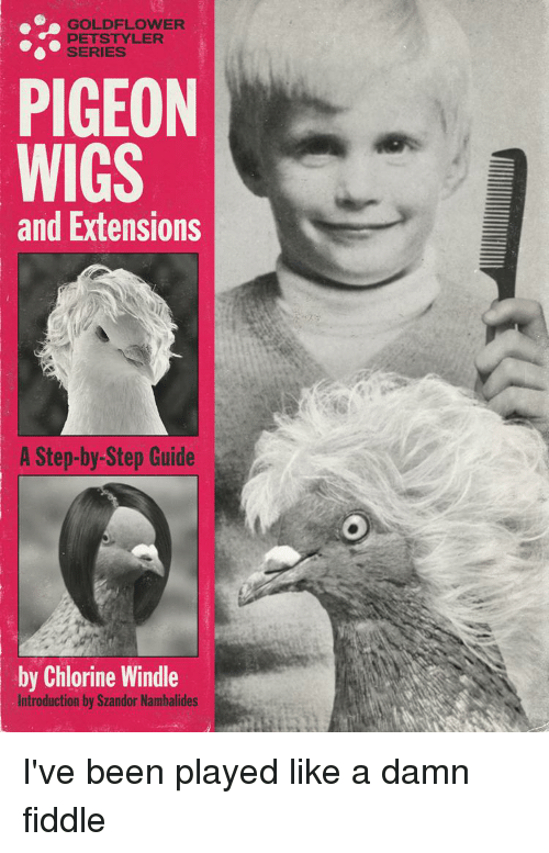 Pets, Wigs, and Dank Memes: GOLDFLOWER  PETS TYLER  SERIES  PIGEON  WIGS  and Extensions  A Step-by-Step Guide  by Chlorine Windle  ntroduction by Szandor Nambalides I've been played like a damn fiddle