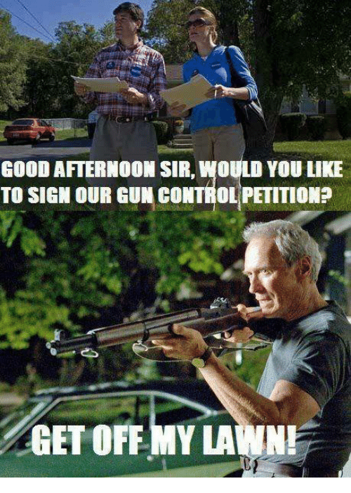 Memes, Control, and Good: GOOD AFTERNOON SIR, WOULD YOU LIKE  TO SIGN OUR GUN CONTROL PETITIONP  GET OFF MY LAWN