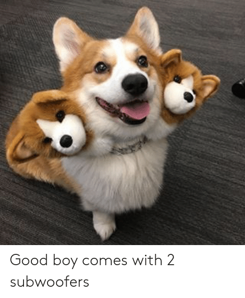 Good, Boy, and Good Boy: Good boy comes with 2 subwoofers