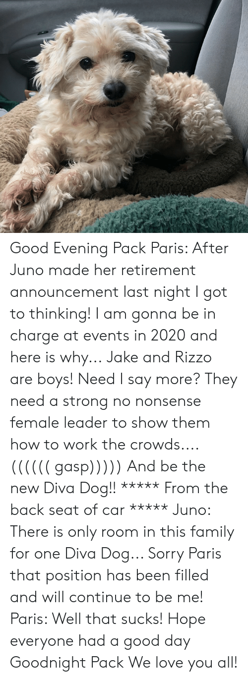 Family, Love, and Memes: Good Evening Pack  Paris: After Juno made her retirement announcement last night I got to thinking! I am gonna be in charge at events in 2020 and here is why... Jake and Rizzo are boys! Need I say more? They need a strong no nonsense female leader to show them how to work the crowds.... (((((( gasp))))) And be the new Diva Dog!!    ***** From the back seat of car *****  Juno: There is only room in this family for one Diva Dog...  Sorry Paris that position has been filled and will continue to be me!  Paris: Well that sucks!  Hope everyone had a good day   Goodnight Pack We love you all!