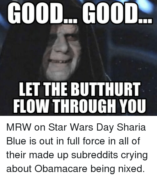 Funniest Meme Subreddits : Best memes about good let the butthurt flow