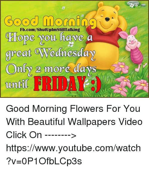 Good Momino Hope You Have A Great Wednesday Only 2 More Days Untl