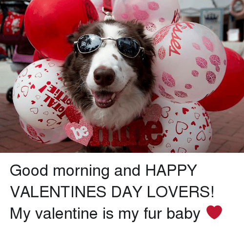 memes valentines day and good morning good morning and happy valentines day lovers