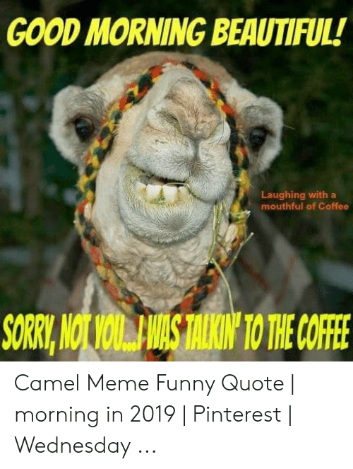 GOOD MORNING BEAUTIFUL! Laughing With a Mouthful of Coffee ...