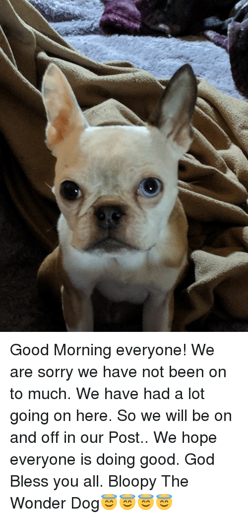 Good Morning Everyone We Are Sorry We Have Not Been On To Much We