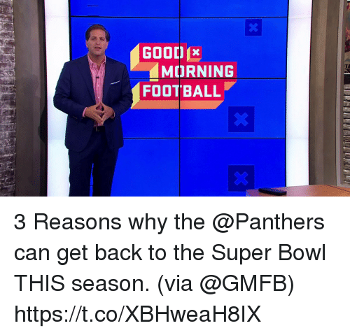 Football, Memes, and Super Bowl: GOOD  MORNING  FOOTBALL 3 Reasons why the @Panthers can get back to the Super Bowl THIS season.  (via @GMFB) https://t.co/XBHweaH8IX