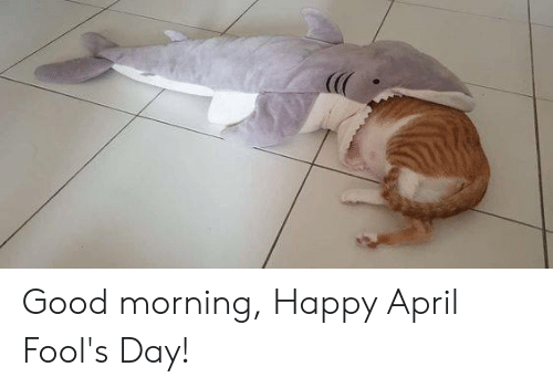 Good Morning Happy April Fools Day Meme On Sizzle