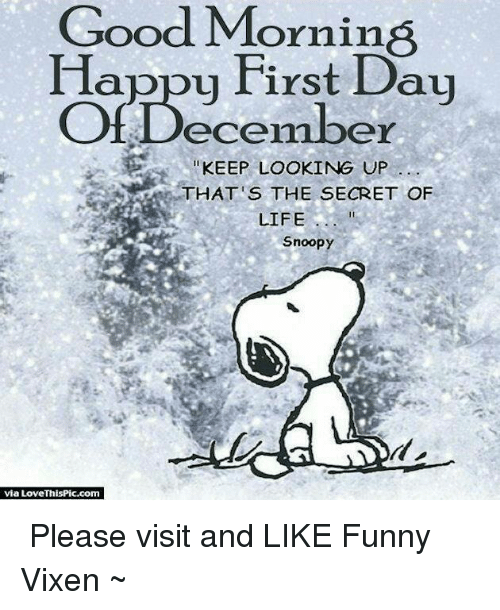Memes, Good Morning, and Snoopy: Good Morning  Happy First Day  Of December  KEEP LOOKING UP  THAT'S THE SECRET OF  LIFE  Snoopy  via Love ThisPic.com ♡ Please visit and LIKE Funny Vixen ~