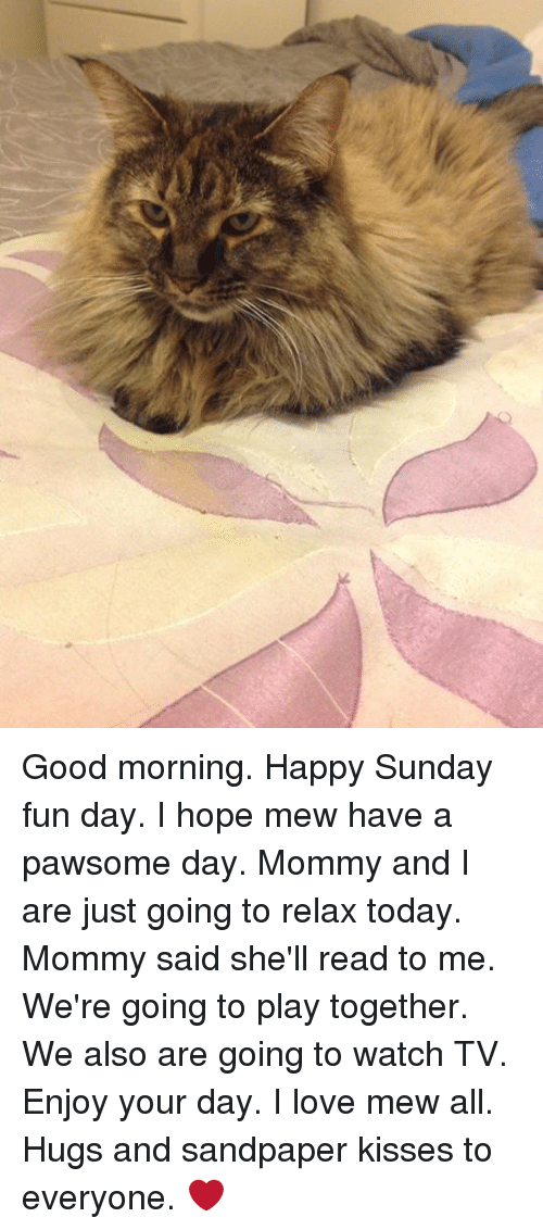 Good Morning Happy Sunday Fun Day I Hope Mew Have A Pawsome Day