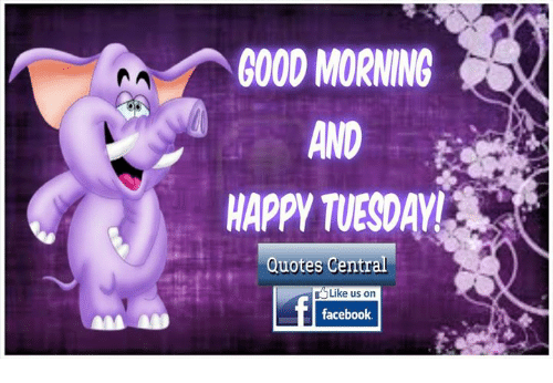 Good Morning Happy Tuesday Quotes Central Like Us On Facebook