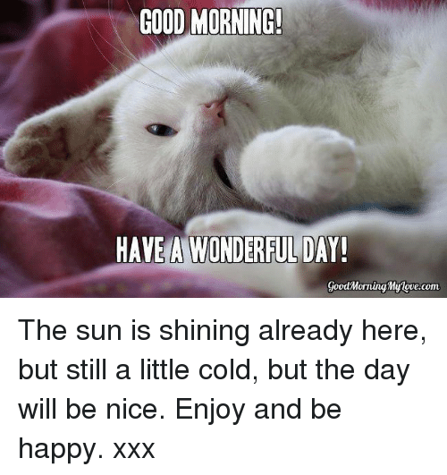25+ Best Memes About Good Morning My Love
