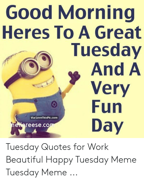 good morning heres to a great tuesday and a very fun day via