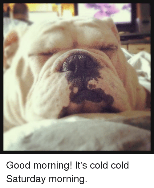 Good Morning Its Cold Cold Saturday Morning Meme On Meme