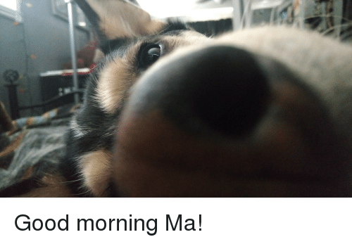 Funny, Good Morning, and Good: Good morning Ma!