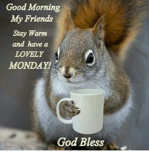 Good Morning My Friends Stay Warm And Have A Lovely Monday God Bless