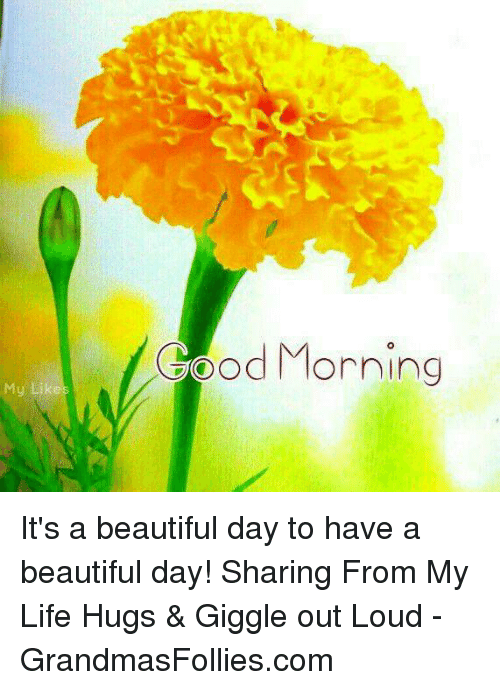 Good Morning My Lik Its A Beautiful Day To Have A Beautiful Day
