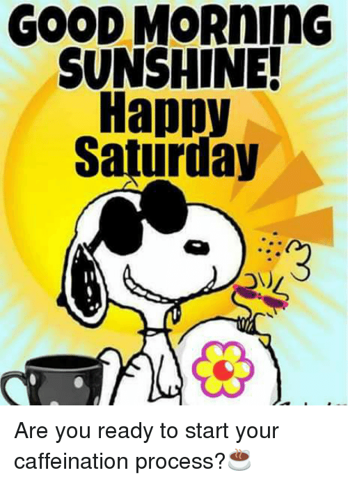 Good Morning Sunshine Happy Saturday Are You Ready To Start Your