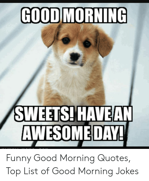 GOOD MORNING SWEETS! HAVEAN AWESOME DAY! Funny Good Morning ...