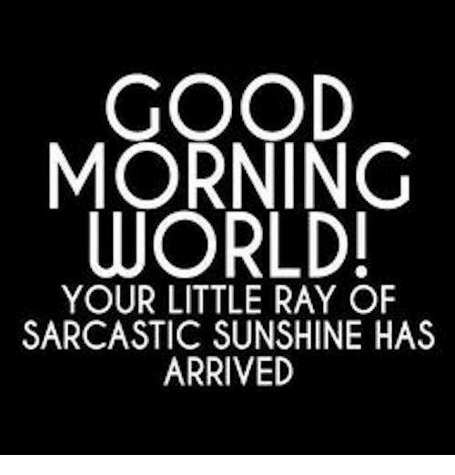 Dank, Good Morning, and Good: GOOD  MORNING  WORLD  YOUR LITTLE RAY OF  SARCASTIC SUNSHINE HAS  ARRIVED