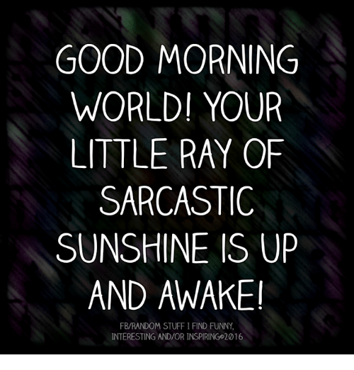 Good Morning World Your Little Ray Of Sarcastic Sunshine Is Up And