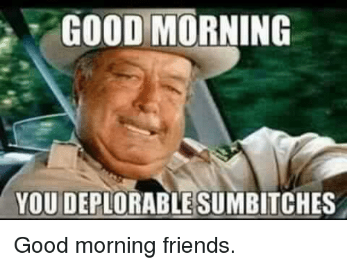 Good Morning You Deplorable Sumbitches Good Morning Friends