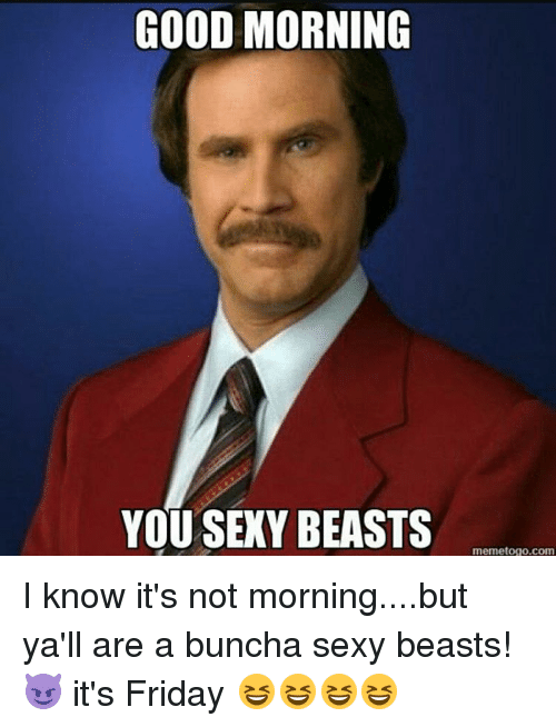 Good Morning You Sexy Beasts Memetogo Com I Know Its Not Morningbut
