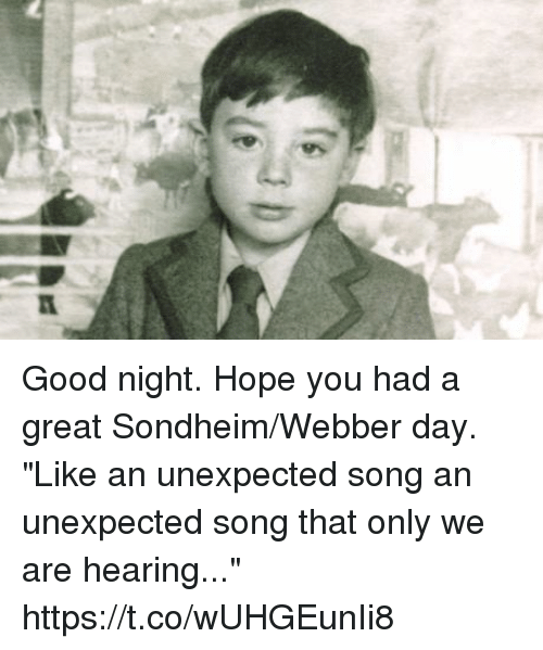 """Memes, Good, and Hope: Good night. Hope you had a great Sondheim/Webber day. """"Like an unexpected song an unexpected song that only we are hearing..."""" https://t.co/wUHGEunIi8"""