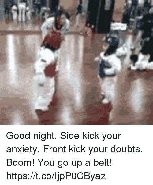 Memes, Anxiety, and Good: Good night. Side kick your anxiety. Front kick your doubts. Boom! You go up a belt! https://t.co/IjpP0CByaz