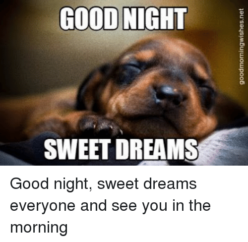 Image result for Sweet dreams everyone images