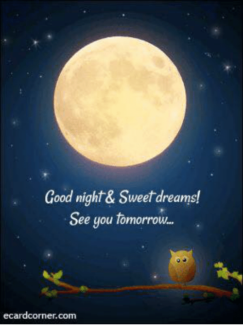 Good Night Sweet Dreams See You Tomorrow Ecard Cornercom Meme
