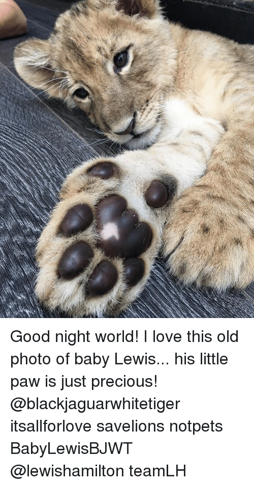 Good Night World! I Love This Old Photo of Baby Lewis His Little Paw