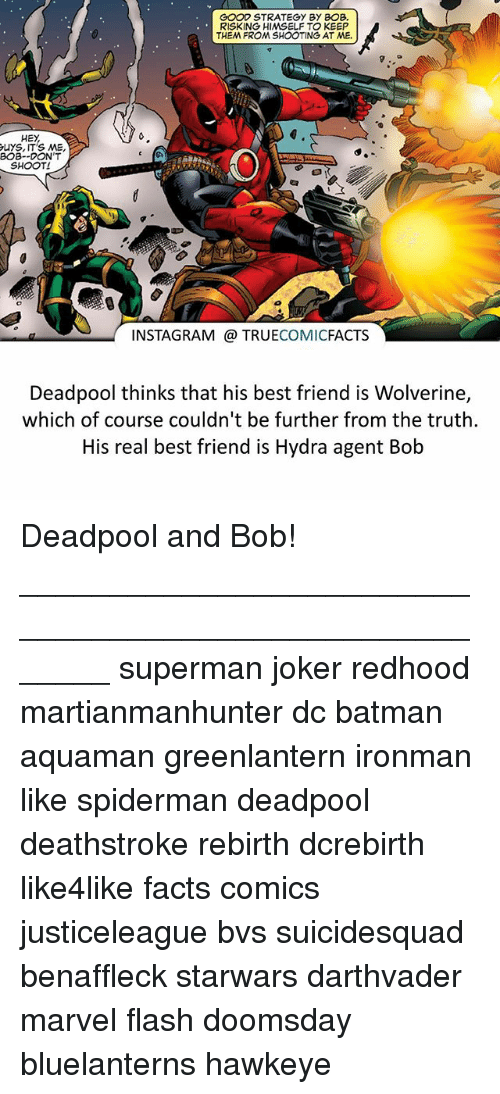 Batman, Best Friend, and Facts: GOOD STRATEGY BY BOB.  RISKING HIMSELF TO KEEP  THEM FROM SHOOTING AT ME.  HEY  ruYS, ITS ME,  BOB--DONT  SHOOT!  INSTAGRAM TRUE  COMIC  FACTS  Deadpool thinks that his best friend is Wolverine,  which of course couldn't be further from the truth.  His real best friend is Hydra agent Bob Deadpool and Bob! ⠀_______________________________________________________ superman joker redhood martianmanhunter dc batman aquaman greenlantern ironman like spiderman deadpool deathstroke rebirth dcrebirth like4like facts comics justiceleague bvs suicidesquad benaffleck starwars darthvader marvel flash doomsday bluelanterns hawkeye