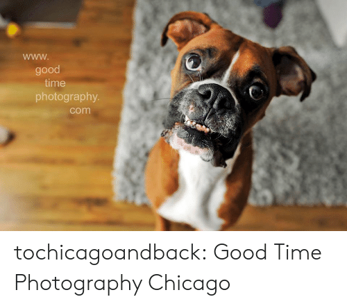 Chicago, Tumblr, and Blog: good  time  photography  com tochicagoandback:  Good Time Photography Chicago