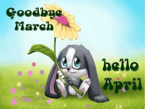 Hello, Memes, and April: Goodbye  March  hello  April