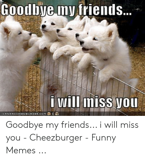 I Miss Y All Too Cheezburger Funny Memes Funny Pictures