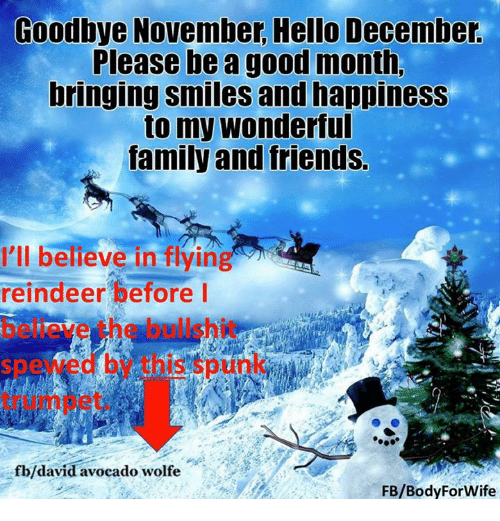 Hello, Memes, And Wolf: Goodbye November Hello December. Please Be A Good