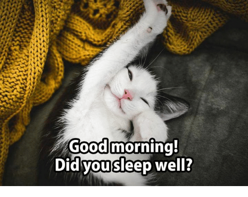 Image result for good Morning, great sleep