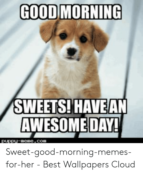 Good Morning Quotes Messages Images Memes Sayings