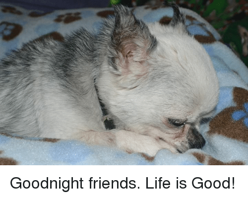 Friends, Life, and Memes: Goodnight friends.  Life is Good!