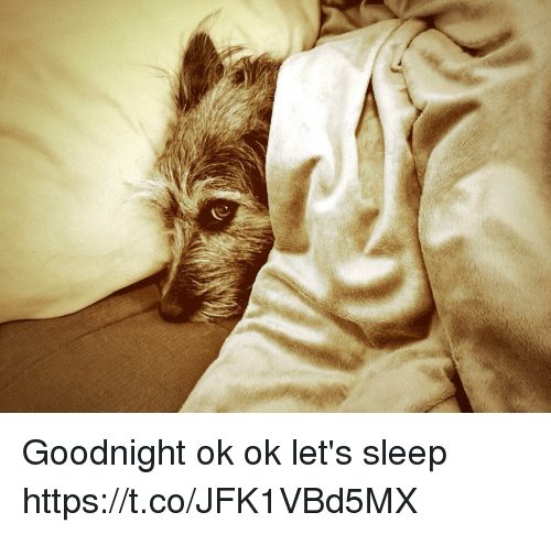 Memes, Sleep, and 🤖: Goodnight ok ok let's sleep https://t.co/JFK1VBd5MX