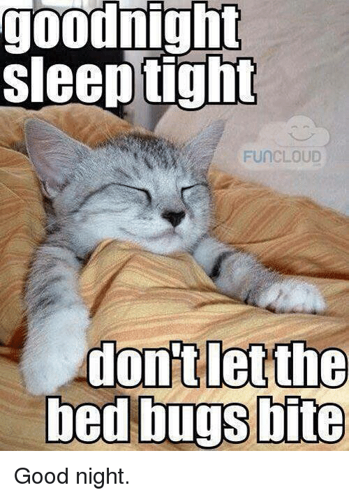 Memes Bed Bugs And Cloud Goodnight Sleep Tight Fun CLOUD Dont Let The