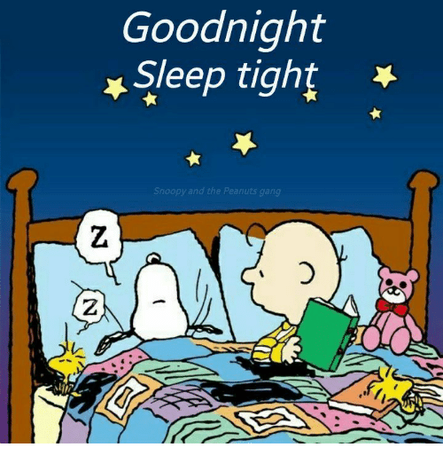 memes and goodnight goodnight sleep tight snoopy and the peanuts gang