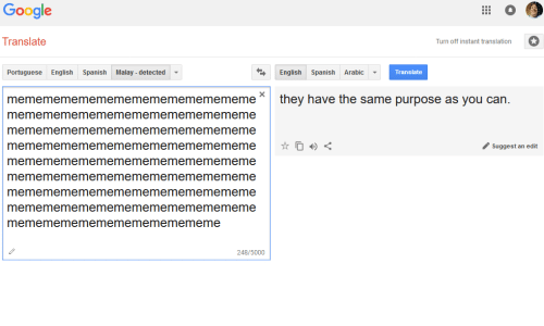 Translate dutch to french google-5879