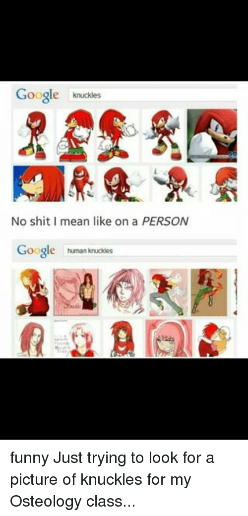 Google, Memes, and A Picture: Google  knuckles  No shit mean like on a PERSON  Google  human knuckles funny Just trying to look for a picture of knuckles for my Osteology class...