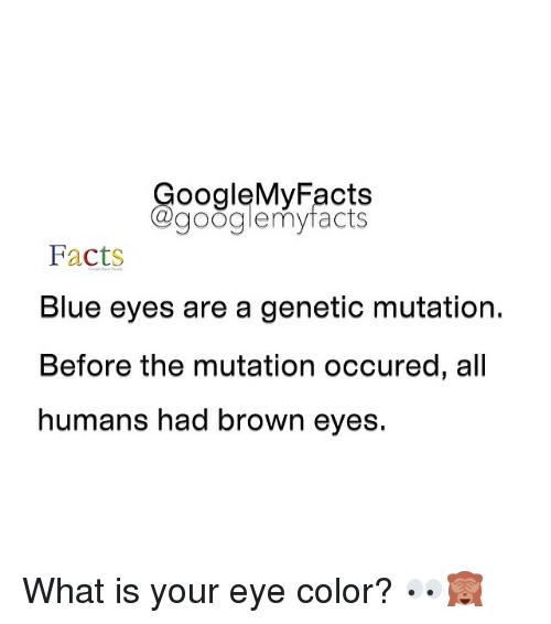Google My Facts a Googlemy Facts Facts Blue Eyes Are a Genetic