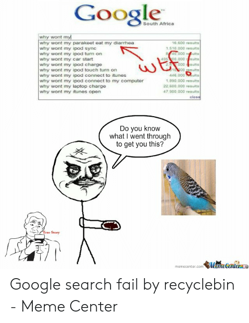 Google South Africa Why Wont Why Wont My Parakeet Eat My
