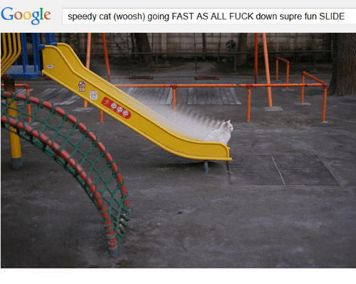 Google, Fuck, and Cat: Google  speedy cat (woosh) going FAST AS ALL FUCK down supre fun SLIDE