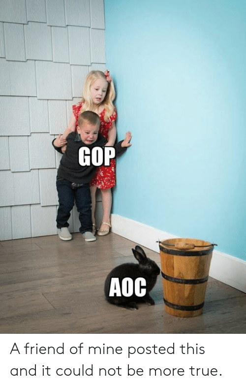 Memes, True, and 🤖: GOP  AOC A friend of mine posted this and it could not be more true.
